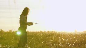 Поезда воина Викинга с ножом в поле против красивого захода солнца Очень красивая кинематографическая рамка сток-видео