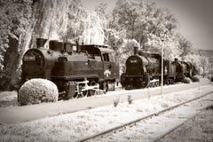 поезда пара Стоковые Изображения RF