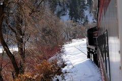 поезд берега озера Стоковые Изображения