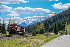 Поезд в поле, Британской Колумбии, Канаде Стоковые Фотографии RF