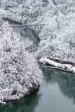 Поезд ландшафта зимы стоковое изображение rf
