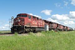 поезд лета рельса дня cp Стоковая Фотография