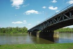 поезд моста Стоковые Изображения
