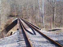 поезд моста Стоковое Фото