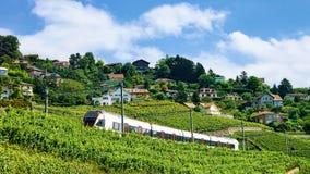Поезд на железной дороге около террасы виноградника Lavaux Стоковые Фотографии RF