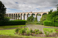 Поезд на viaduct Стоковое Изображение RF