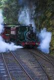 Поезд пара в дождевом лесе Стоковые Изображения