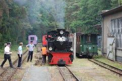 Поезд пара узкой колеи железнодорожный Стоковые Изображения RF
