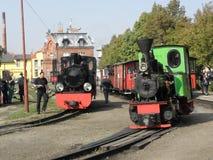 Поезд пара узкой колеи железнодорожный Стоковые Изображения