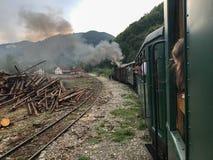 Поезд пара Mocanita идя в горы Стоковые Фото
