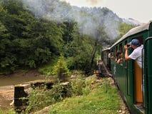 Поезд пара Mocanita идя в горы Стоковые Изображения