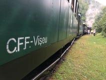 Поезд пара Mocanita идя в горы Стоковое Изображение RF