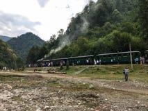 Поезд пара Mocanita идя в горы Стоковые Изображения RF