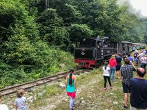 Поезд пара Mocanita идя в горы Стоковое Фото