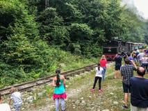 Поезд пара Mocanita идя в горы Стоковое фото RF