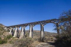 Поезд сводов моста   Стоковая Фотография RF