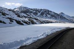 поезд следов Аляски Стоковые Фото