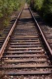 поезд следов Стоковая Фотография