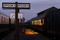 поезд станции сумрака Стоковое Изображение RF