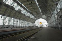 поезд станции moscow Стоковая Фотография RF