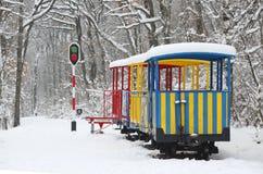 Поезд ` s детей в лесе в зиме стоковое фото