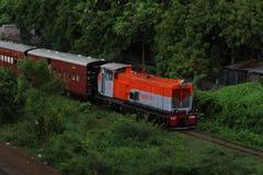 Поезд в зеленых цветах Стоковое Фото