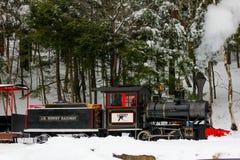 Поезд горы гагары. Стоковые Изображения
