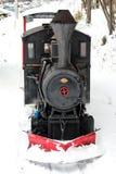 Поезд горы гагары Стоковые Изображения