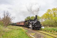 Поезд ностальгии пара стоковое изображение rf