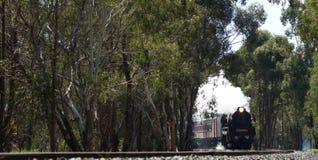 Поезд пара на следе на курить рельсов Стоковое фото RF