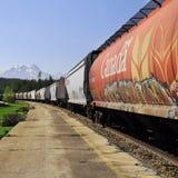 поезд перевозки длинний Стоковые Изображения