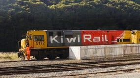 Поезд рельса кивиа, Новая Зеландия Стоковое Изображение