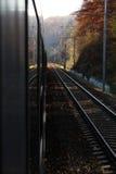 Поезд свертывает дальше в лесе осени стоковые фотографии rf