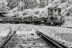 Поезд транспортируя древесину стоковое фото