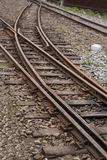 Поезд узкой колеи леса Alishan железнодорожный Стоковые Фотографии RF