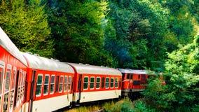 Поезд узкой колеи Стоковые Фото