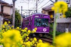 Поезд Японии сценарный Стоковые Фото