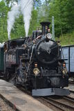 Поезд BFD 3 (бриг-Furka-Disentis) HG 3/4 3 пара Стоковая Фотография