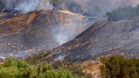 ПОЖАРНЫЕ лесного пожара 1a акции видеоматериалы