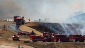 ПОЖАРНЫЕ лесного пожара 1k сток-видео