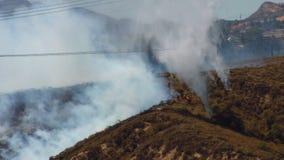 ПОЖАРНЫЕ лесного пожара 1l сток-видео