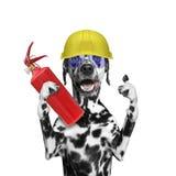 Пожарный спасает собаку от огня все Стоковые Фото