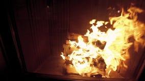 Пожар в камине видеоматериал