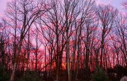 Пожар в небе Стоковое фото RF