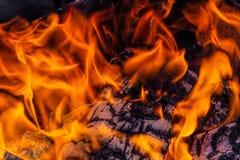пожар горящая древесина пожара горящие угли стоковая фотография