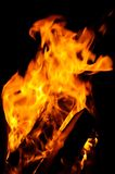 пожар горящий швырок Стоковое Изображение RF