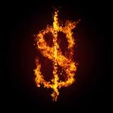 пожар доллара кризиса финансовохозяйственный Стоковые Изображения