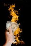 пожар доллара Стоковая Фотография