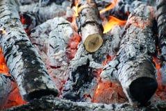 Пожар и золы Стоковое Изображение RF