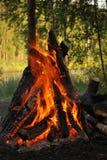 пожар лагеря Стоковая Фотография